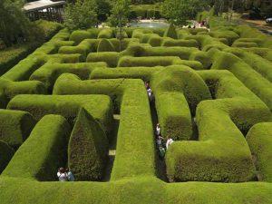 Maze on the Mornington Peninsula